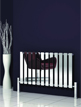 Reina Pienza Chrome Designer Radiator 825 x 550mm